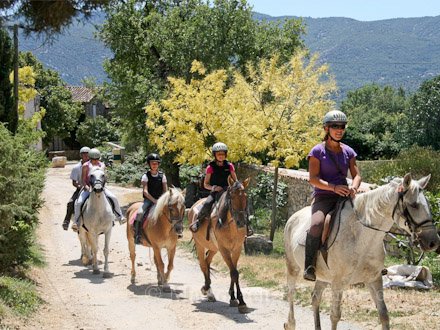 Horseback riding of the holiday rental Mas en pierre at Caseneuve ,Vaucluse